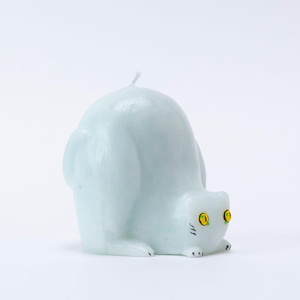 狙う白い猫