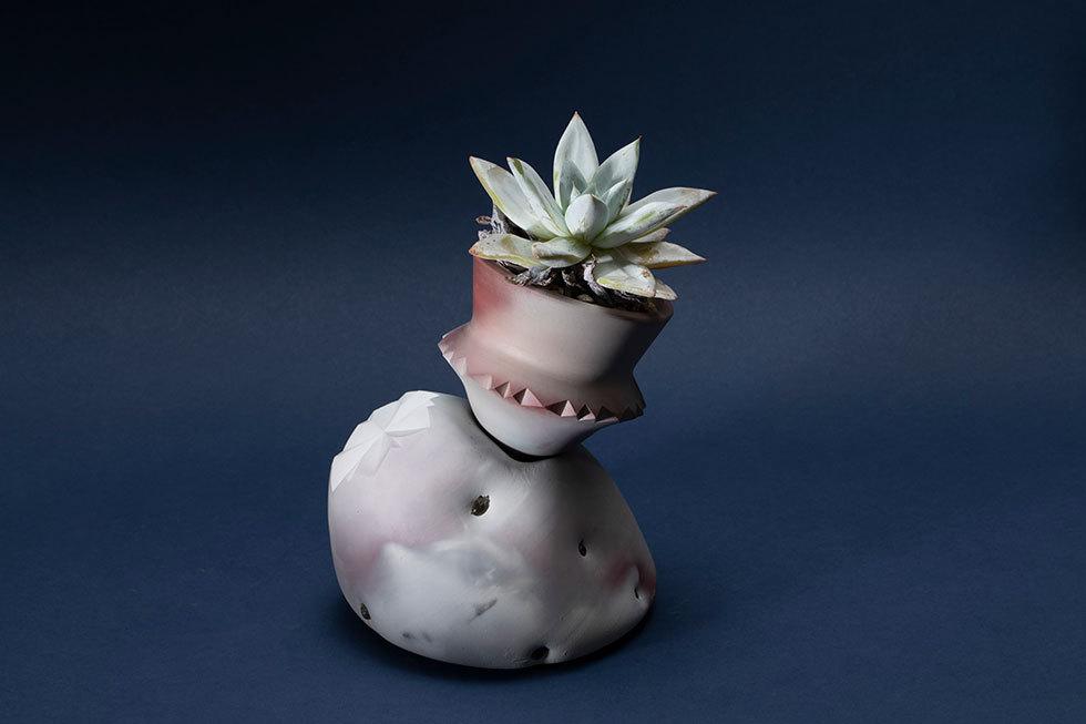facet pot(メキシカンジャイアント)