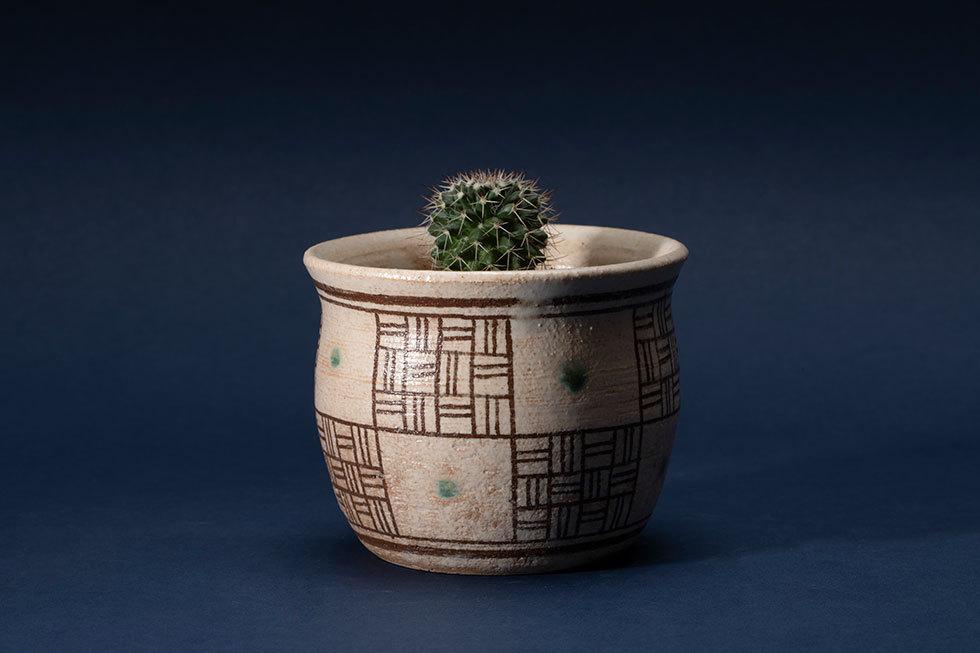 植木鉢「市松文」(ハクリュウマル)
