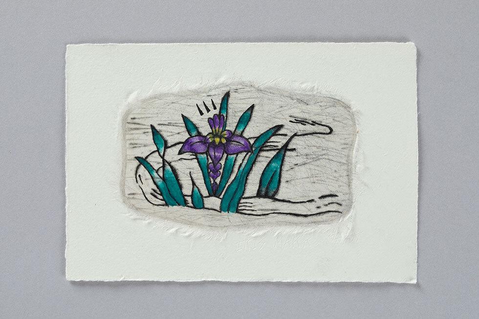 Iris Mark