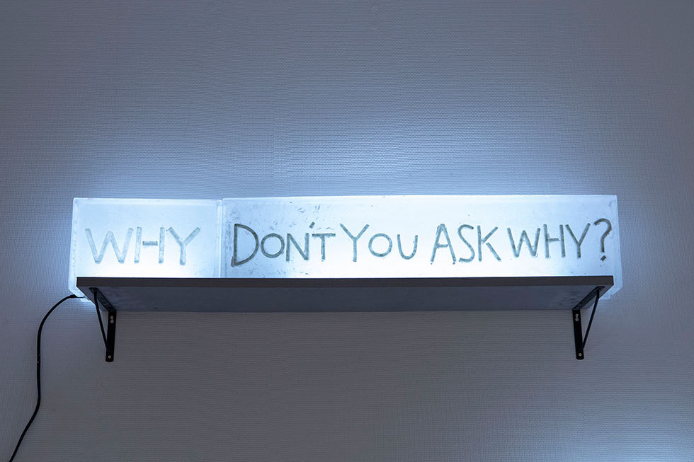Don't you ask why?