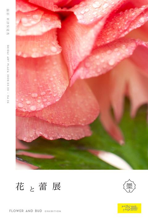 「花と蕾展」DM